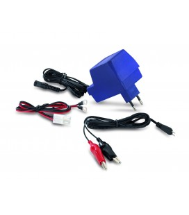Plug in lead acid battery chargers