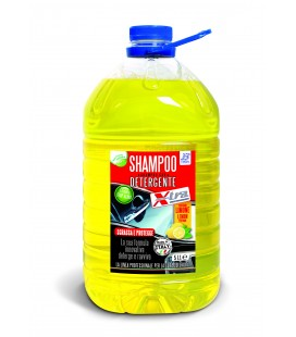 Shampoo for car 5 Lt.
