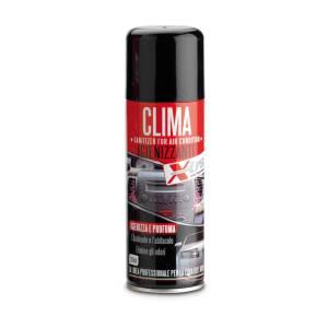 Spray igienizzante Climatizzatore 200 ml per auto