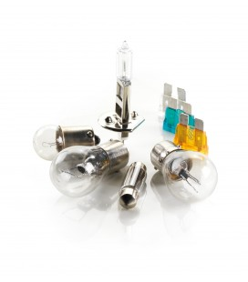 Halogen H1 lamp kit + 50% brightness